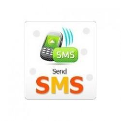 Lo Zucchero HONEYWELL - Abbonamento-2 anni GSM / SMS